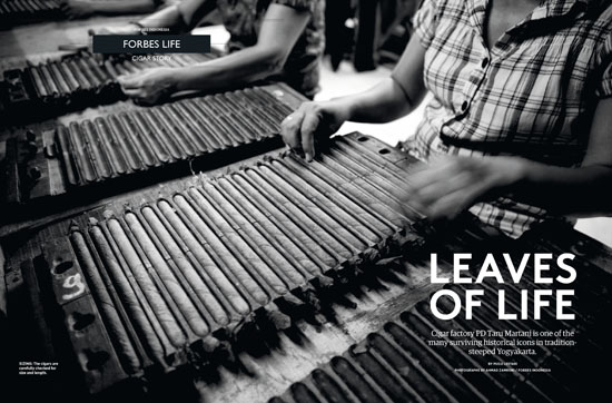 550_HiRes_CigarStory01_18 Forbes 2012 April